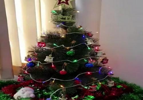 Jasa Pembuatan Dekorasi Natal Berkwalitas Dengan Harga Murah